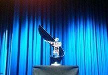 """Stahlinnovationspreis 2012 - Spannbandbrücke """"Slinky springs to fame""""."""